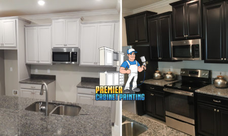 Premier Cabinet Painting Refinishing In Tampa 727 280 5575